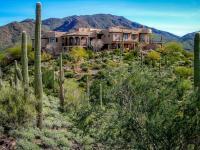 Substantial Price Adjustment! The Saguaro Sanctuary!