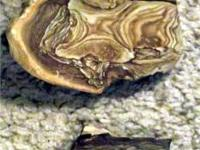 PICTURE JASPER, rock form can be sliced many times.