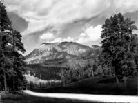 AlanDeutschPhotography          8 x 10 unmated 99.00