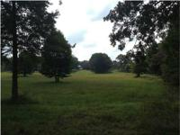 Beautiful 38 acres only 10 minutes from Fall Creek