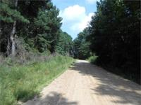 The Hudgin Creek Road Tract is +/- 25 acres of pine