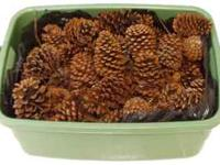 PINE CONES, MINI WREATHS, DRIVEWAY LIGHTS AND OTHER