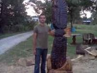 This eagle was chainsaw carved. 8 feet tall and 2 feet