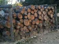 Pine Firewood available: split wood - $220 a cord