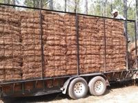 We have baled pine straw for sale. We sell rolls and