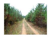 . Full-time Caretaker and Staff.Over 400 Acres of