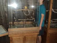 "Large plexi glass cage (enclosure). Overall: 72"" high,"