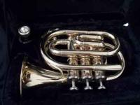 I've only played this Pocket Trumpet a few times. The