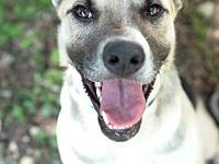 Polito's story Meet the cutest smile ever! Polito is a
