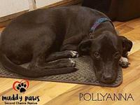 Pollyanna's story   The suggested donation amount