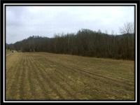 Just Available; 30 Acres of woods and open fields in