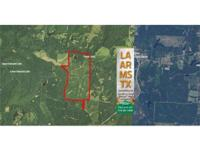 369 acre Timberland & & Hunting land for sale with