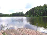LAKE LOT amongst the pines at PINE TREE LAKE. This 2.4