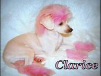 Clarice- This little girl was born on April 9th. She is