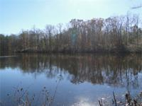 Powhatan 1.9 acres with 300+' 5 acre lake. Lot