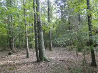 10 acres wooded across from 1400 acre State Park on the