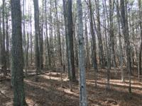 Absolutely stunning lot with clean mature hardwoods
