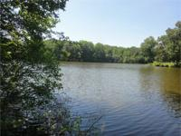 Absolutely beautiful, one-of-a-kind 10.7 acre parcel