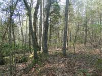 12 acres wooded across from 1400 acre State Park on the