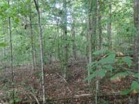 Wooded really private 20 acre parcel near Rt. 522 and