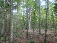 . Wooded very private 3 acre parcel near Rt. 522 and