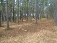 -- Branchway Springs ... 3.45 acres ...$65,000.