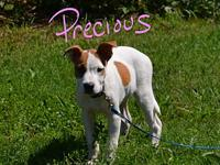 Precious's story Precious lives up to her name she is