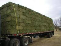 VERY GOOD 2 WIRE BALES FINE STEM AND GREAT LEAF ABOUT