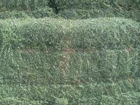 Baled and stored right! Premium 75 lb Grass Alfalfa