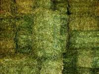 Premium Horse Quality Bales - Orchard Grass Alfalfa