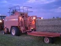 PREMIUM ORCHARDGRASS 3X3 MIDSIZE BALES , THE BEST YOU