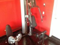 Price reduced____ HOIST WEIGHT AND WORK OUT SYSTEM___