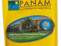 Princess 77 Bermuda Grass Princess 77 Bermuda grass is