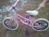 We have a princess bike 16 inch...needs to be wiped