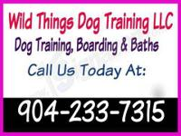 Wild Things Dog Training, LLC provides dog training