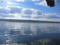 6 acres overlooking Cayuga Lake with complete privacy