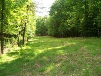 23.463 acres pasture land with barn, spring, fencing,