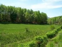 4 acres of open meadow and wooded forest. Land has been