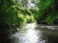 If you're looking for river frontage, then this is the
