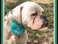 Prudence is 2-3 years old and is located in Savannah,
