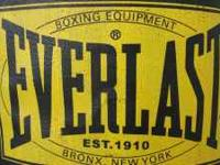 Great condition, Everlast punching bag  Location: