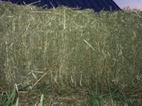 I have about 550 bales of 100% PURE ALFALFA for sale. I