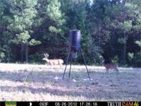 HUNTING LAND WITH TIMBER ! This tract has lots to