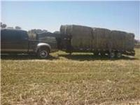 Quality, Barn stored horse hay for sale. 2 Stand leafy,