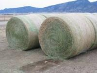 High quality horse hay for sale. Alfalfa/Grass mix.