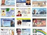Fake drivers license cards and State ID cards