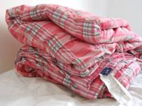 Queen/Full size Tommy Hilfiger comforter. In the image,