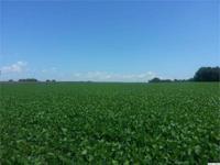 Productive, tillable farm land. Possible building