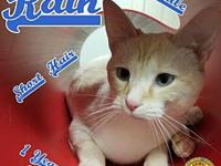 Rain's story You can fill out an adoption application