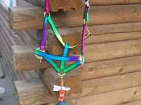 NEW Rainbow color. Horse size halter and lead. Real